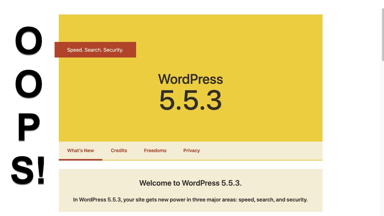 Wordpress OOPS!
