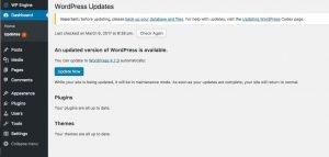 Wordpress Update 4.7.3